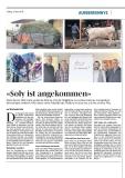 PDF - Kuh Soly Projekte Alpkäserei und Kuhherde Milchverarbeitung